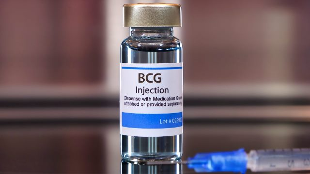 BCG vaccine covid 19 prevention old people