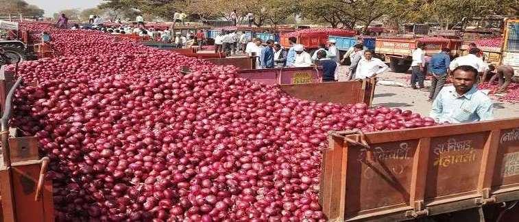 Onion-onion