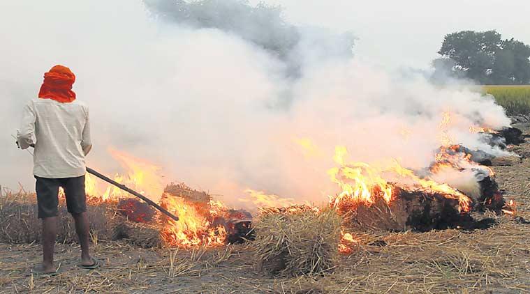 crop-burning